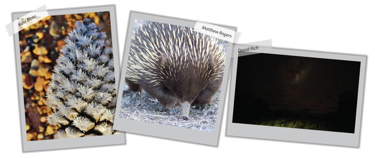 general photo samples