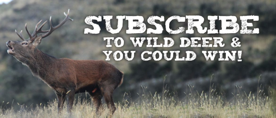Subscribe to Wild Deer Magazine to Win!
