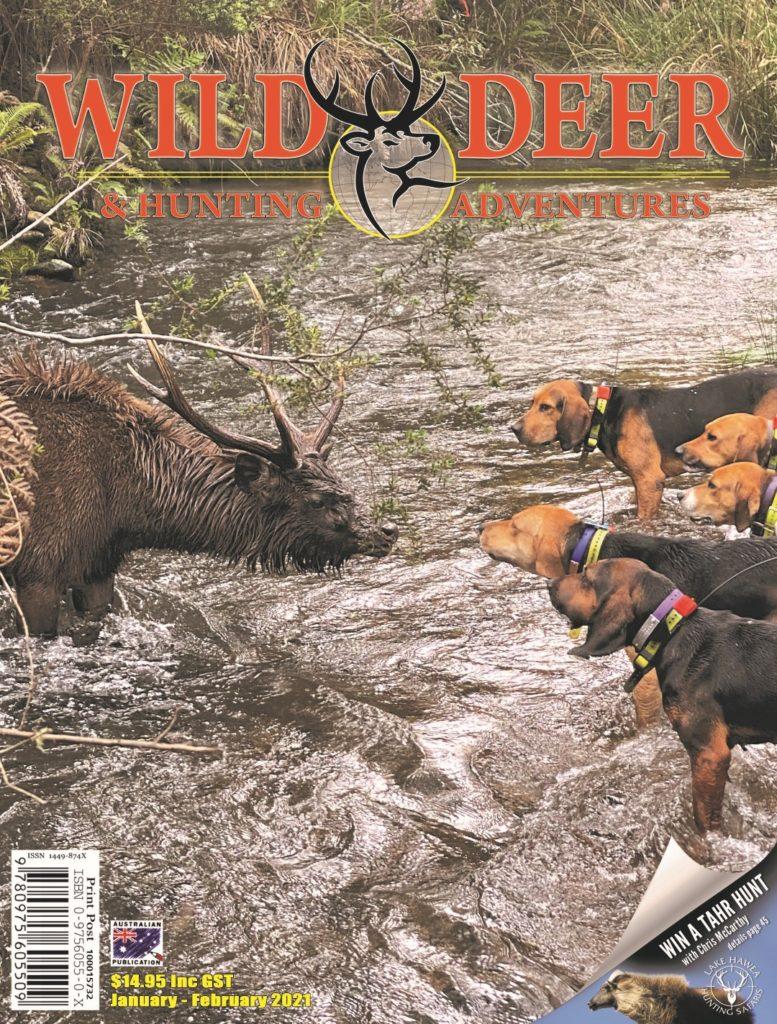 Wild Deer & Hunting Adventures
